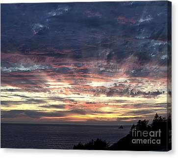 Fire In The Sky Canvas Print by Sandra Bronstein