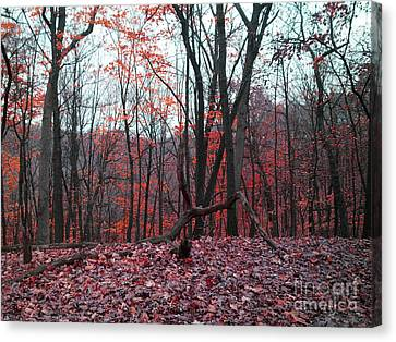 Fire In The Woodland Canvas Print