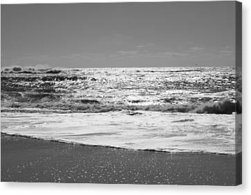 Fire Island Black And White Canvas Print by Barbara Bardzik
