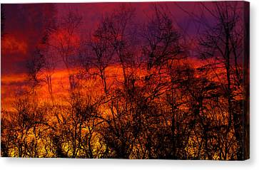 Fire Canvas Print by Jb Atelier