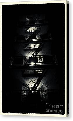 Fire Ladders Park Slope New York City Canvas Print