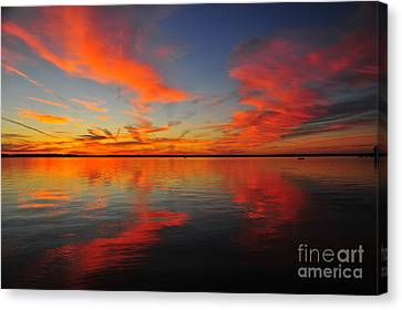 Firecracker Sunset 14 Canvas Print