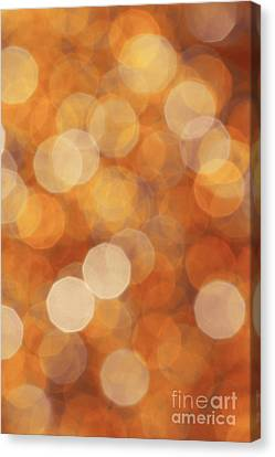 Firelight Canvas Print by Jan Bickerton