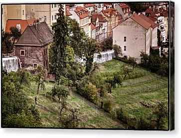Firenze In Prague Canvas Print by Joan Carroll