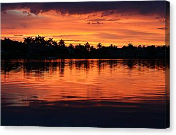 Firewater Canvas Print by Laura Fasulo