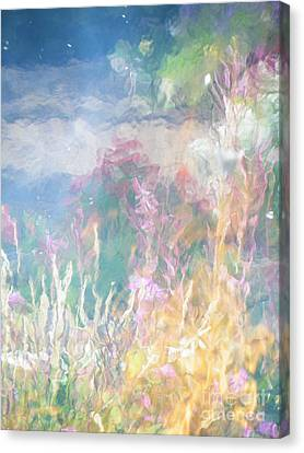 Fireweed Number 9  Canvas Print by Brian Boyle