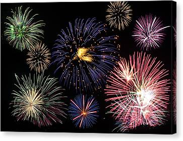 Firework Celebration  Canvas Print by Sammuel Hernandez