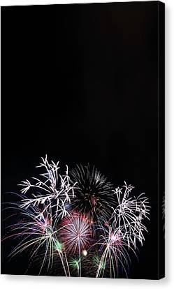 Firework Display At Night Sky Canvas Print