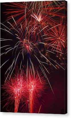 Firework Majesty  Canvas Print by Garry Gay