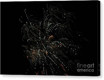 Independance Canvas Print - Fireworks 16 by Cassie Marie Photography