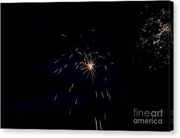 Independance Canvas Print - Fireworks 28 by Cassie Marie Photography