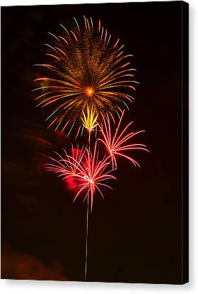 Fireworks 4 Canvas Print by Chris Flees