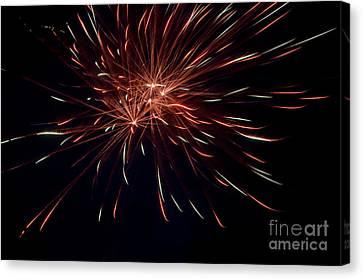 Fireworks 40 Canvas Print