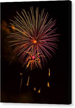 Fireworks 6 Canvas Print by Chris Flees