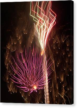 Fireworks Canvas Print by Aimee L Maher Photography and Art Visit ALMGallerydotcom