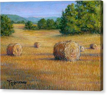 First Cut Canvas Print by Tanja Ware