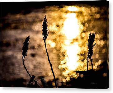 First Day Canvas Print by Bob Orsillo