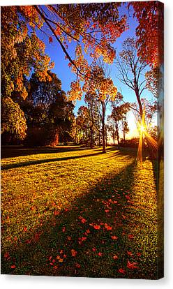 First Day Of Fall Canvas Print by Phil Koch