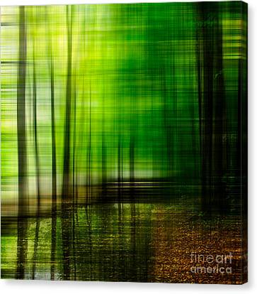 First Days In Fall Canvas Print by Hannes Cmarits