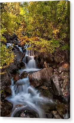 First Falls Canvas Print by Cat Connor