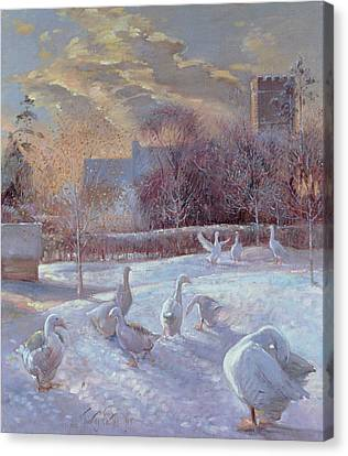 First Light Canvas Print by Timothy Easton