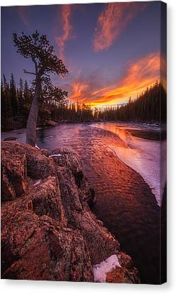 First Light Canvas Print by Darren  White