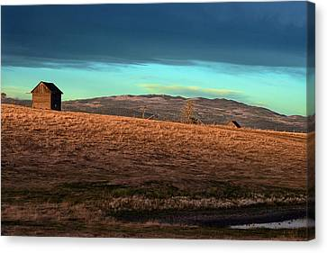 First Light Canvas Print by Ed Hall