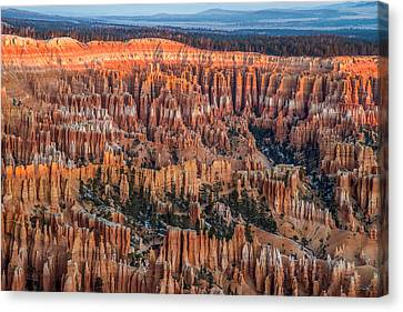 First Light In Bryce Canvas Print by Pierre Leclerc Photography
