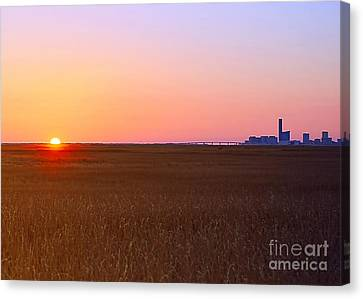 First Light Of 2015 Canvas Print
