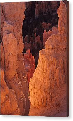 Canvas Print featuring the photograph First Light On Hoodoos by Susan Rovira