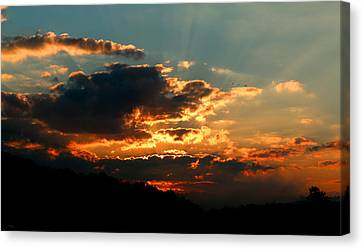 First Light Canvas Print by Rebecca Davis