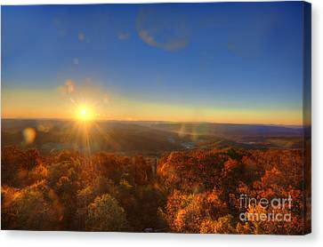 First Morning Light Striking Top Of Trees Canvas Print by Dan Friend