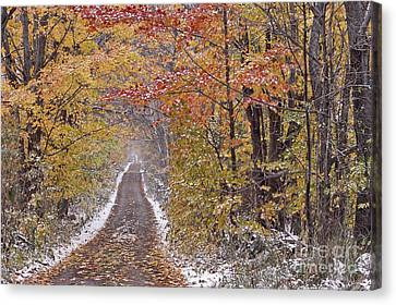 First Snow Canvas Print by Alan L Graham