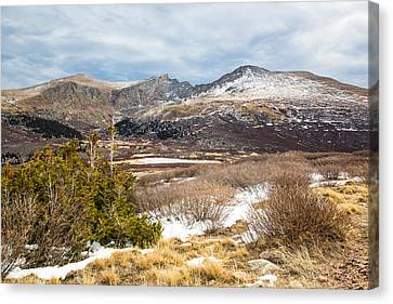 First Snow At Treeline Canvas Print by Adam Pender