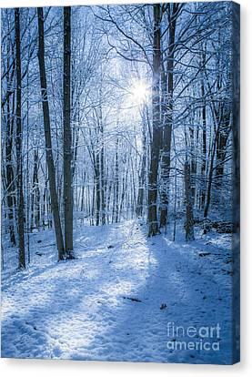 First Snow Canvas Print by Diane Diederich