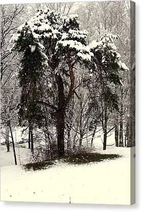 First Snow Canvas Print by Henryk Gorecki