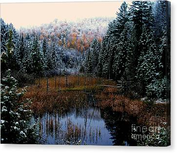 First Snow Canvas Print by Steven Valkenberg