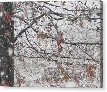 First Snowfall  Canvas Print by Sonali Gangane