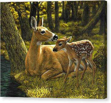 First Spring - Variation Canvas Print by Crista Forest