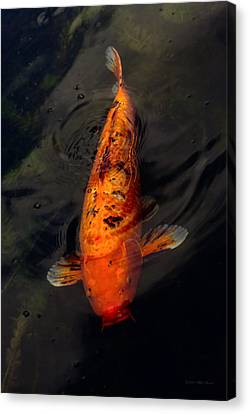 Fish - Big Fish Little Pond  Canvas Print