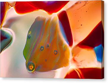 Fish Blowing Bubbles Canvas Print by Omaste Witkowski
