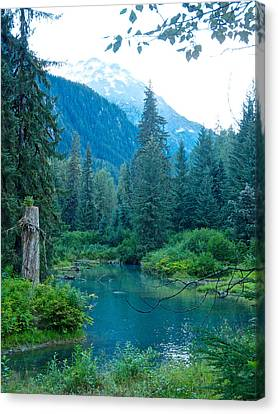 Fish Creek In Tongass National Forest By Hyder-ak  Canvas Print by Ruth Hager