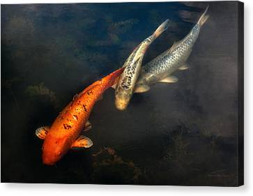Fish - Fishing For A Compliment  Canvas Print