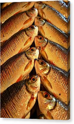Canvas Print featuring the photograph Fish For Sale by Henry Kowalski