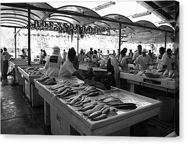 Fish Market In Dubai Canvas Print by Maeve O Connell