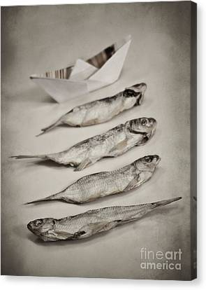Fish Out Of Water Canvas Print by Diana Kraleva