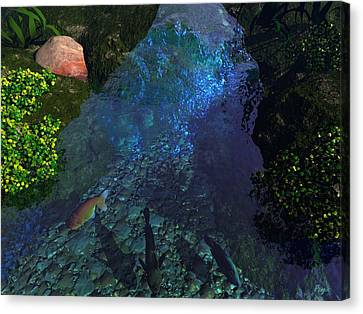 Fish Pond Canvas Print by John Pangia