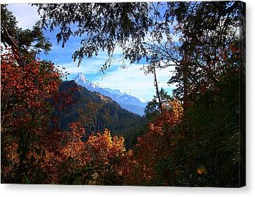 Fish Tail Mountain Canvas Print