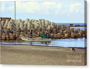Fisherman  Canvas Print by Mohamed Elkhamisy