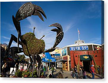 Fishermans Wharf Crab Canvas Print